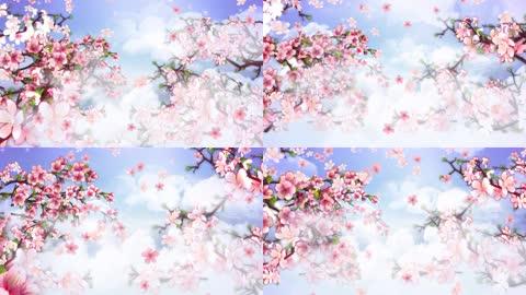 桃花盛开(有音乐)