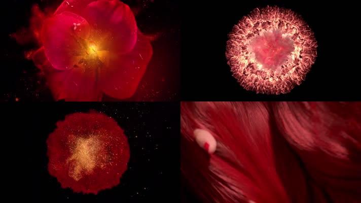 性感美女秀发鲜花花瓣飞舞