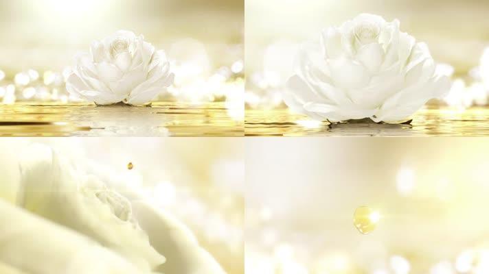 牡丹花玫瑰花鲜花草本植物精油金色水滴美容