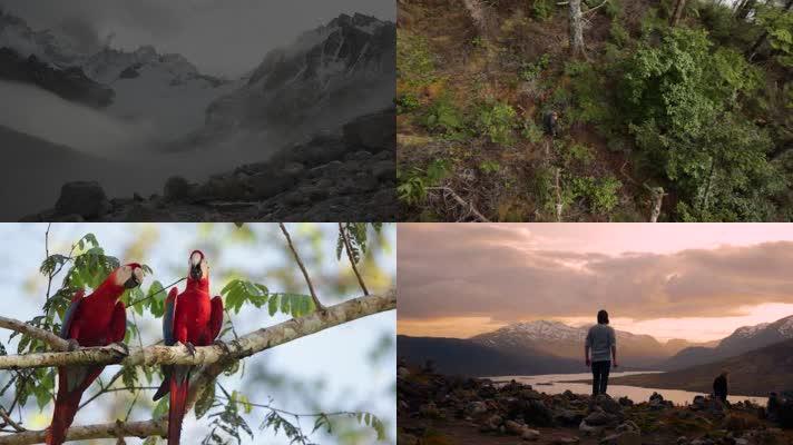极限运动、徒步、跳伞、划船、登山、跳水