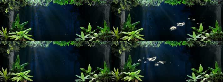 温馨的森林、儿童舞台背景