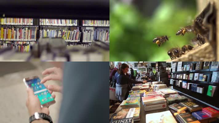 阅读 书店  书图书馆 读书 知识 书籍