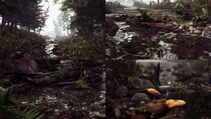 【4K】森林深处