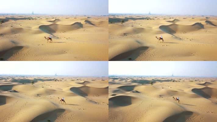 航拍沙漠中骑着骆驼的男人